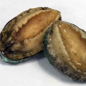 Abalone – Wild (Chile)